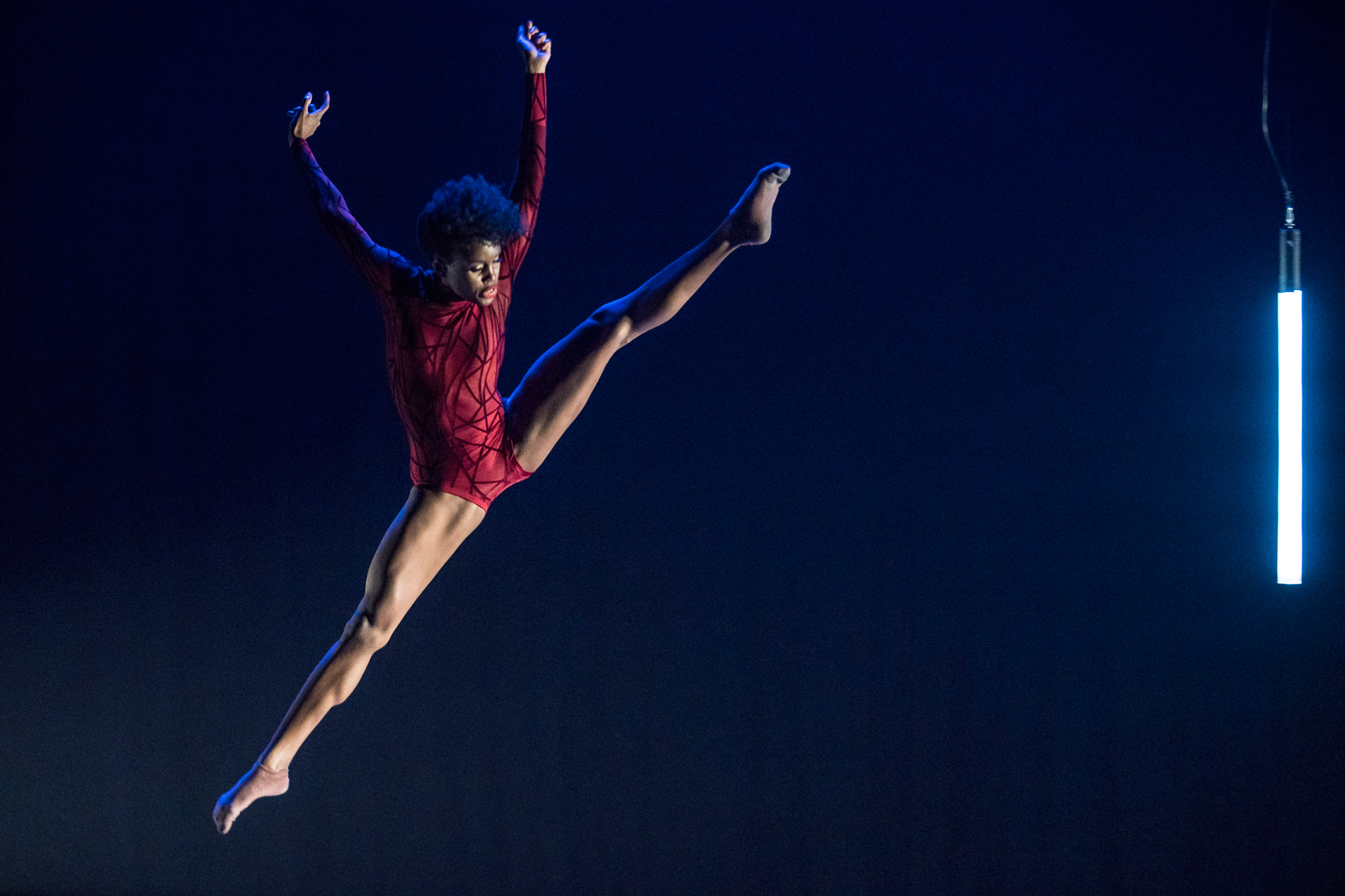 """Visceral Dance Chicago's Paige Fraser in Nick Pupillo's """"Synapse"""". Photo by Todd Rosenberg."""